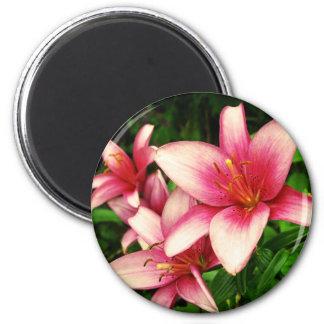 Moneymaker Lily 6 Cm Round Magnet