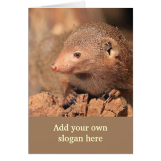 Mongoose Photo to Customize Yourself Cards