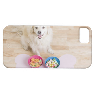 mongrel sitting in front of two bowls with dog iPhone 5 cases