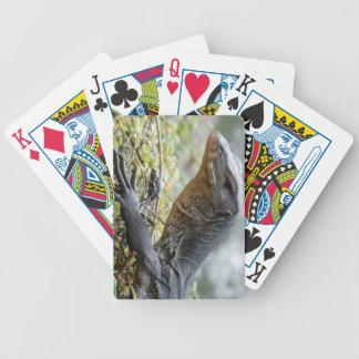 Monitor Lizard Card Deck