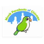 Monk Parakeets of Chicago