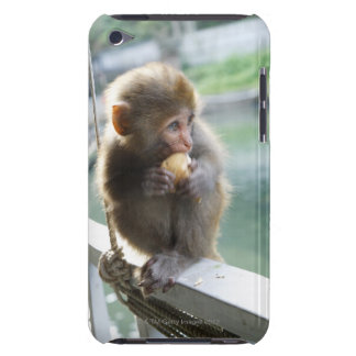 Monkey 2 iPod touch cases