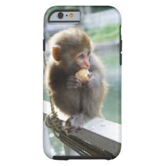 Monkey 2 tough iPhone 6 case