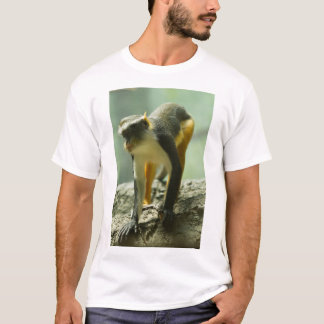 Monkey at Bronx Zoo, New York T-Shirt