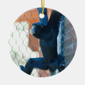 monkey at the zoo round ceramic decoration