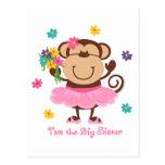 Monkey Big Sister Postcard