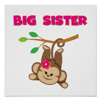 Monkey Big Sister Poster