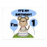 Monkey Birthday Boy 1st Postcard