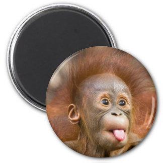Monkey business 2 6 cm round magnet