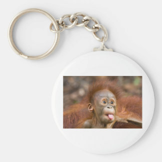Monkey business 2 basic round button key ring