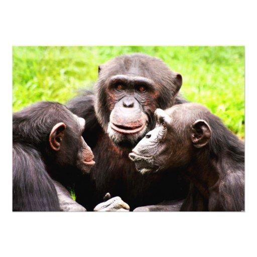 Monkey Business Invitation