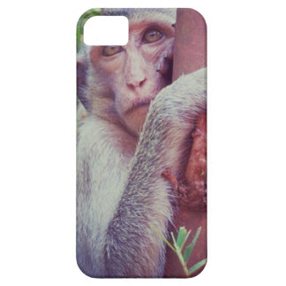 Monkey Case For The iPhone 5