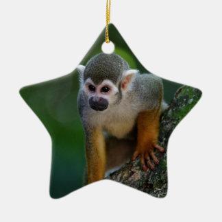 Monkey Ceramic Star Decoration