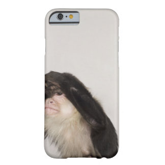 Monkey covering its eyes barely there iPhone 6 case