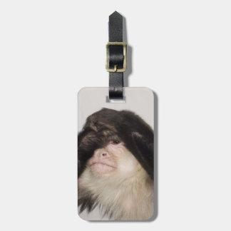 Monkey covering its eyes luggage tag