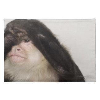 Monkey covering its eyes placemat