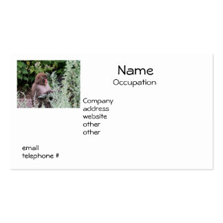 Monkey Daily Pick Business Cards