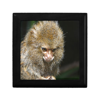 monkey deep thinker learn from experience keepsake boxes