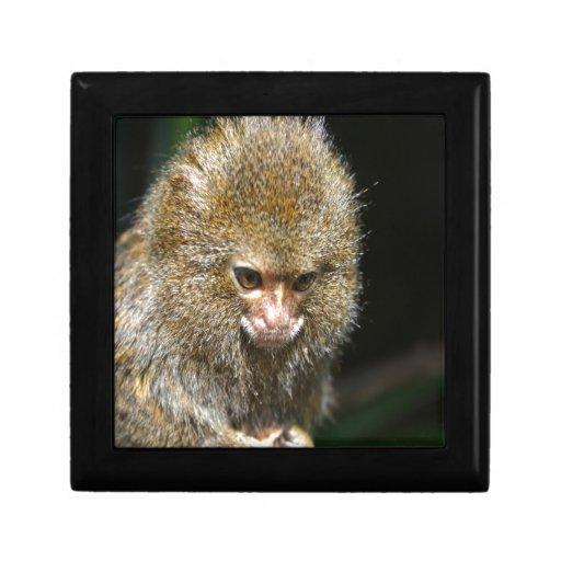 monkey deep thinker  learn from experience keepsake boxes