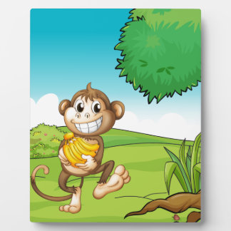 Monkey Display Plaques