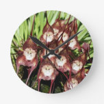 MONKEY FACED FLOWERS .- Miracles of Nature Wallclock