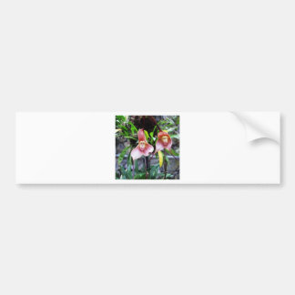 MONKEY Flower: Nature Miracles Wonders Bumper Stickers