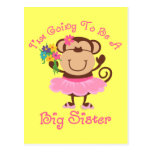 Monkey Future Big Sister Post Cards