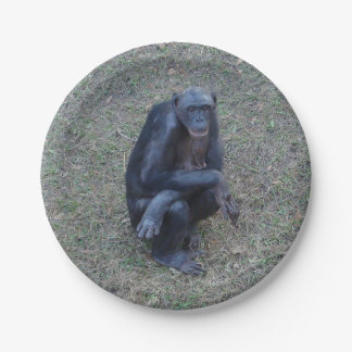 Monkey Gorilla Paper Party Picnic Plates