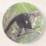 Monkey in Bamboo Jungle Photo Drink Coaster