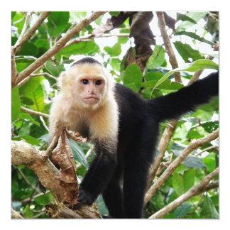 Monkey in Costa Rica Custom Invitations