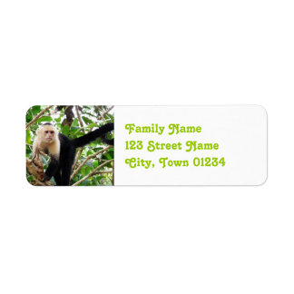 Monkey in Costa Rica Return Address Label