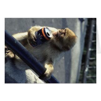 Monkey in Gibraltar Card