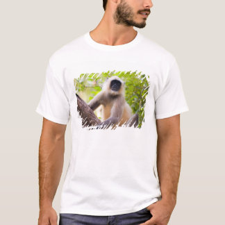 Monkey in jungle of Ranthambore National Park T-Shirt