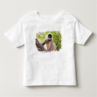 Monkey in jungle of Ranthambore National Park Toddler T-Shirt