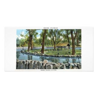 Monkey Island Denver Colorado Picture Card