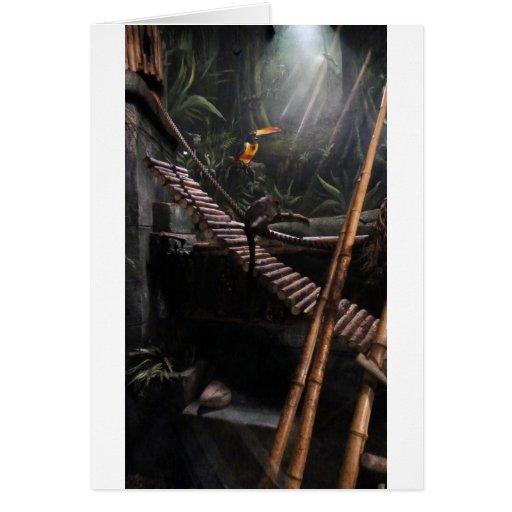monkey jungle greeting card