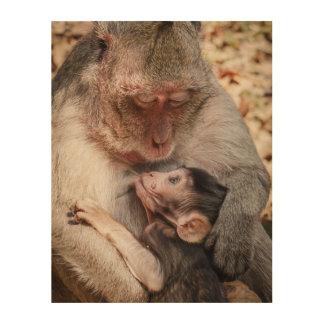 Monkey Mother And Baby Monkey Wood Print