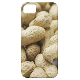 Monkey nuts. iPhone 5 cases