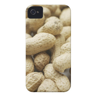 Monkey nuts. iPhone 4 cover