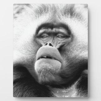 Monkey Plaque