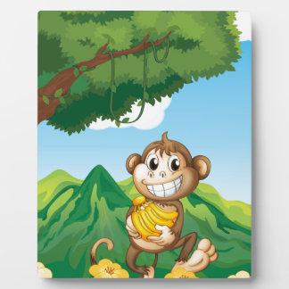 Monkey Plaques