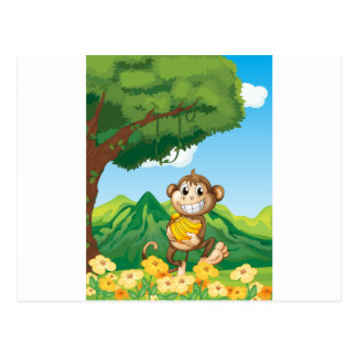 Monkey Postcard