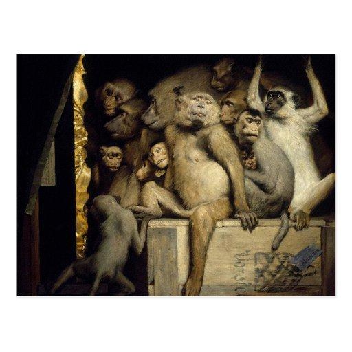 Monkey Postcard: Monkeys Art Critics
