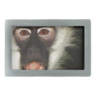 Monkey Rectangular Belt Buckle
