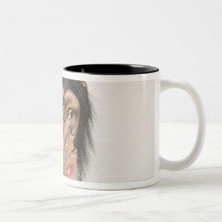 Monkey rubbing its face mugs