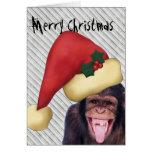 Monkey Santa Christmas
