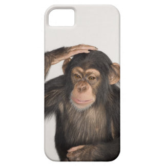 Monkey scratching its head iPhone 5 cases