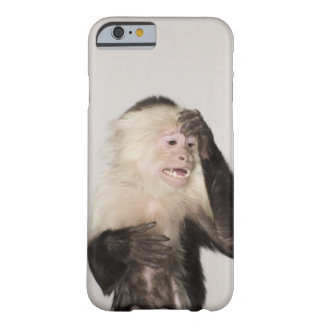 Monkey scratching itself barely there iPhone 6 case