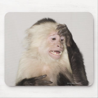 Monkey scratching itself mouse mat