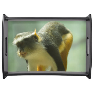 Monkey Serving Tray